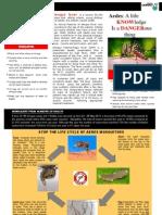 Aedes & Dengue