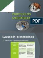 Protocolos anestésicos.pptx