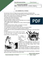 Evaluación Lectora - Com - II - 4to