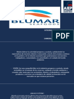 DIAPOSITIVAS BLUMAR CORREGIDA.pptx