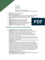 Comandos de Consola de Rasspberry Pi 3