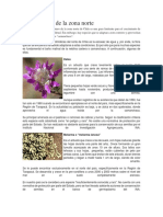 Flora Chilena.docx