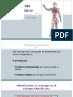Clase de Sistema Cardiovascular