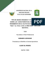 DBCA TESIS Amazonia Peruana
