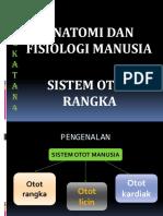 Sistem Otot Rangka.t4