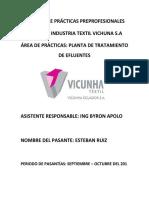 Informe Vichuna .docx