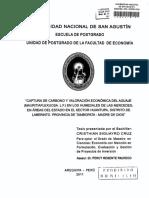 Captura de Carbono y Valoración Economica Del Aguaje en Los Humedales de Las Mercedes Madre de Dios Tesis