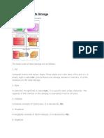 Basic Units of Data Storage