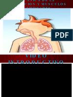mecanicadelarespiracionymusculospulmonares-091019112316-phpapp02