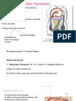 Glomerulonefritis Completo en Orden (1)