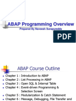 SAP ABAP Programming Overview