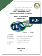 MORIN 1.docx