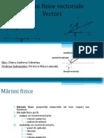 Marimi-fizice-vectoriale