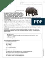 leng_comprensionlectota_1y2B_N36.pdf
