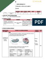 SESIÓN DE celula eucariota.docx