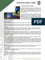 Scouts /// Fichas Tecnicas
