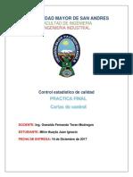 PRACTICA DE CONTROL FINAL MITRE.docx