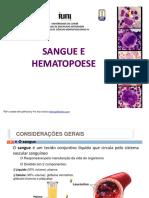 03-sangueehematopoese-130216113700-phpapp02.pdf