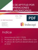 Desarrollo_Pruebas_Aptitud_SNM.pdf