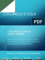 COGUMELO E COLA 1 (1)