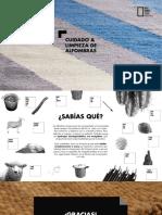 EA_Cuidado_Alfombras_ES.pdf