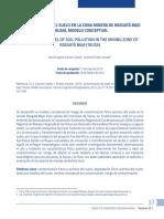Modelo Conceptual de Zona Minera