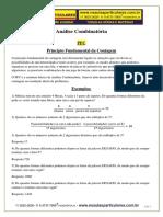 PFC Arranjo Combinação e Permutação Resumo 2017