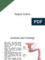 Ruptur Uretra, Definisi, Anatomi, Etiologi