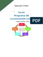 sp_curso_programa_5s__19078.pdf
