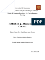 Reflection 4-1 Meaning and Context