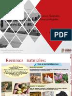 Recursos Naturales.pdf