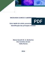 Guia Rapido Micologia 2016
