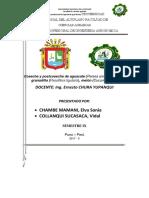 Modelo de Plan de Capacitación Practicas Pre Profesionales 2018
