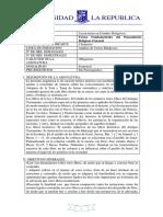 Programa TFPRO.pdf