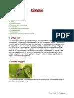 2do a Dengue Primi Prado Ré Rodriguez