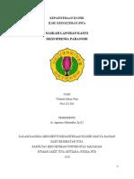 Laporan Kasus Jiwa - Yolanda Satriani Putri.pdf