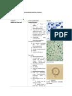 Diagnóstico de Laboratorio Para Parasitosis Hemáticas y Tisulares 1