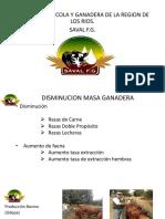 sociedad ganadera de hoy.pdf