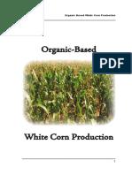 Primer White Corn