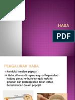 haba.pptx
