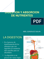 digestion y absorcion de nutrieentes