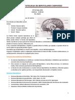 Fisiopatologia Del Eje Hipotalamo-hipofisis