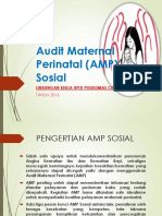 Audit Maternal Perinatal (AMP) Sosial
