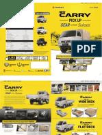 new-carry.pdf