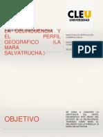 La Delincuencia y El Perfil Geografico (Mara Salvatrucha)