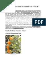 Cara Menanam Tomat Mudah Dan Praktis