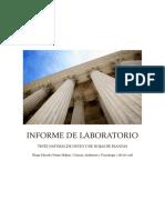 Informe de Laboratorio - Copia