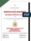 Prakash Working Capital
