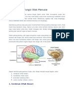 Anatomi dan Fungsi Otak Manusia.docx