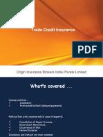 Credit Insurance Ppt 1
